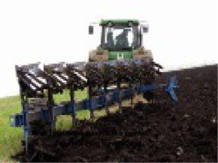 Трактора выходят в степи, Тянут плуги на прицепе.