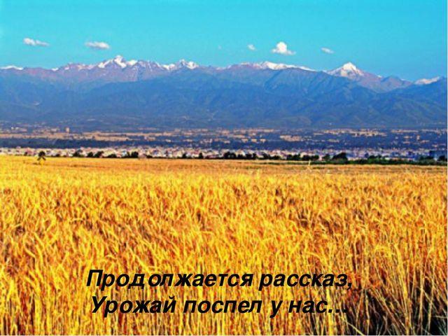 Продолжается рассказ, Урожай поспел у нас…
