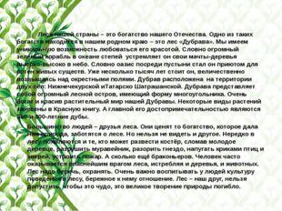 Леса нашей страны – это богатство нашего Отечества. Одно из таких богатств н