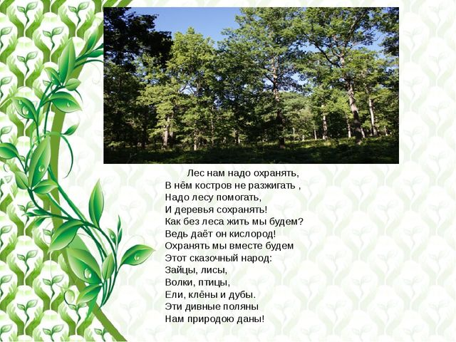 Лес нам надо охранять, В нём костров не разжигать , Надо лесу помогать, И де...