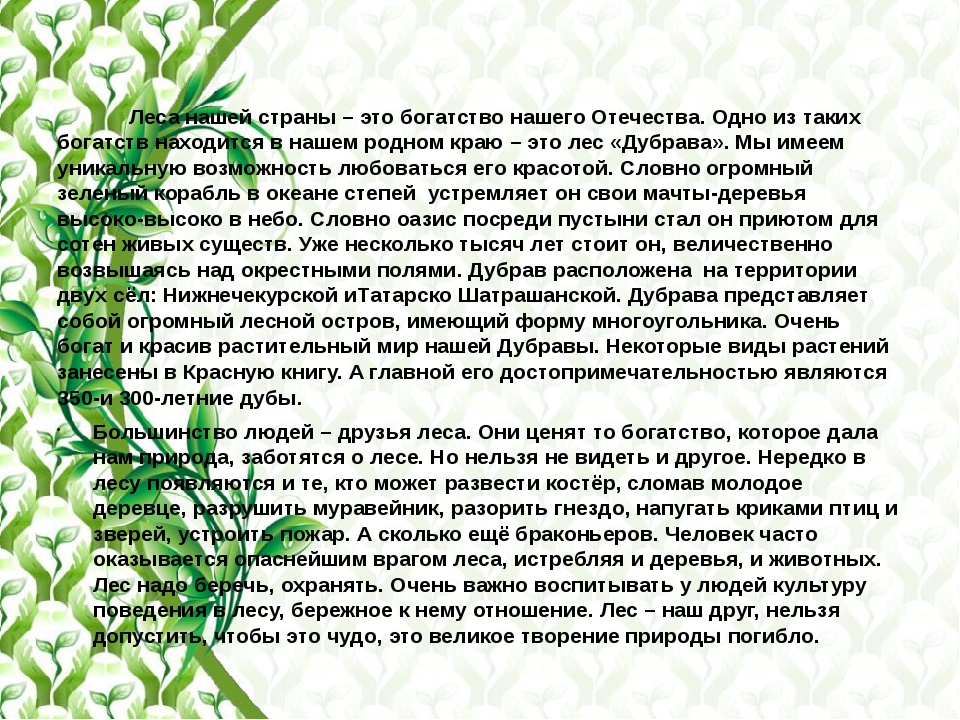 Леса нашей страны – это богатство нашего Отечества. Одно из таких богатств н...