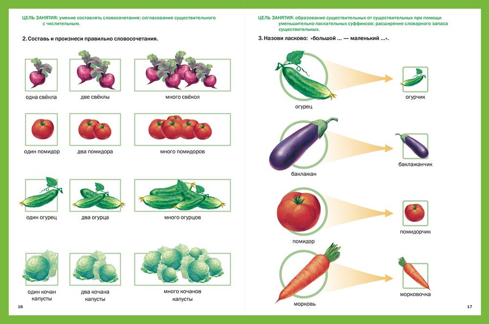 опытная деятельность по теме овощи