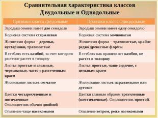 Сравнительная характеристика классов Двудольные и Однодольные Признакикласса