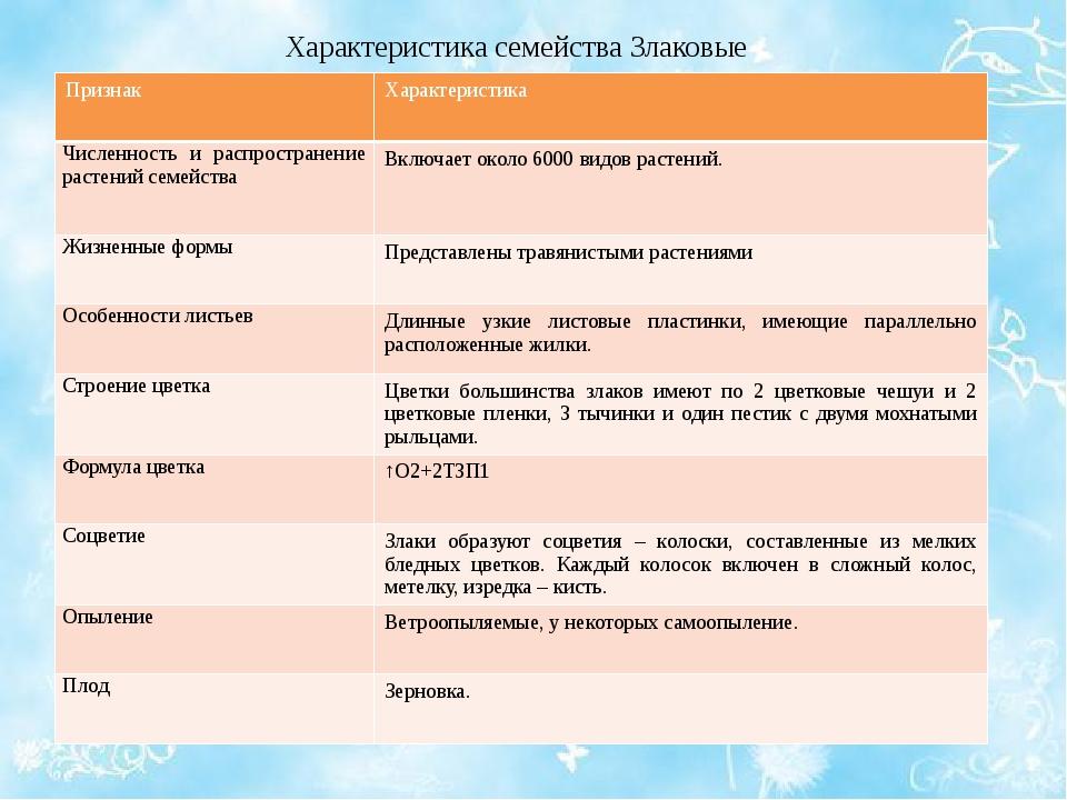 Характеристика семейства Злаковые Признак Характеристика Численность и распро...