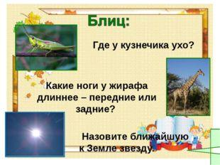 Где у кузнечика ухо? Какие ноги у жирафа длиннее – передние или задние? Назо