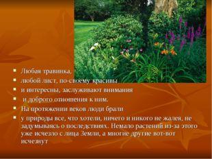 Любая травинка, любой лист, по-своему красивы и интересны, заслуживают вниман