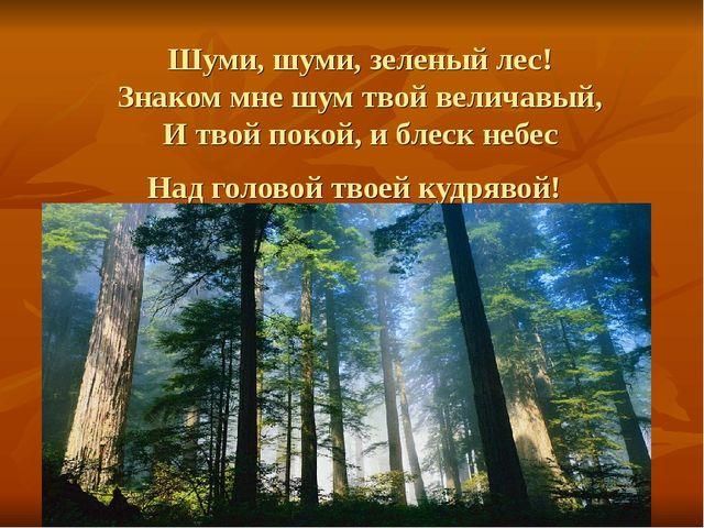 Шуми, шуми, зеленый лес! Знаком мне шум твой величавый, И твой покой, и блеск...