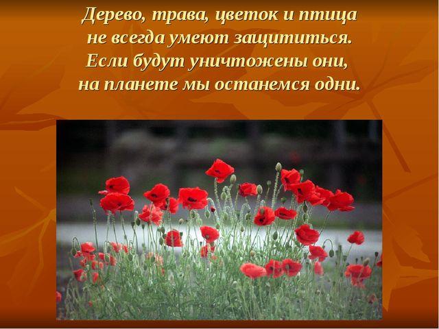 Дерево, трава, цветок и птица не всегда умеют защититься. Если будут уничтоже...