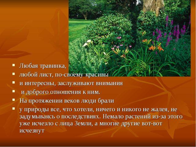 Любая травинка, любой лист, по-своему красивы и интересны, заслуживают вниман...