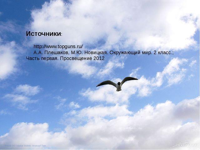 Источники: http://www.topguns.ru/ А.А. Плешаков, М.Ю. Новицкая. Окружающий ми...