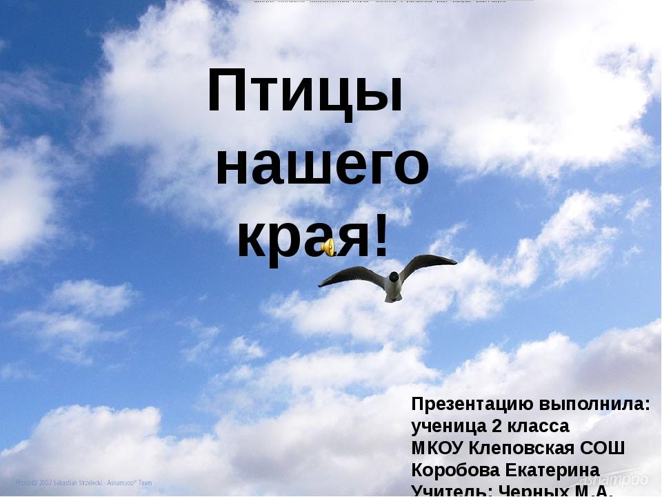 Птицы нашего края! Презентацию выполнила: ученица 2 класса МКОУ Клеповская СО...