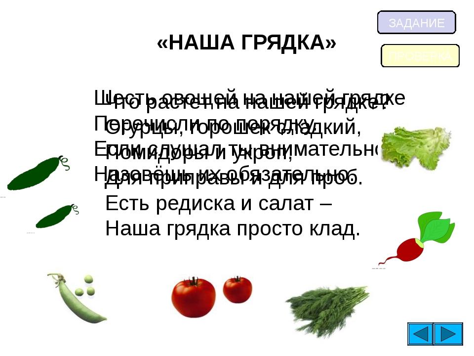 «НАША ГРЯДКА» Что растет на нашей грядке? Огурцы, горошек сладкий, Помидоры и...