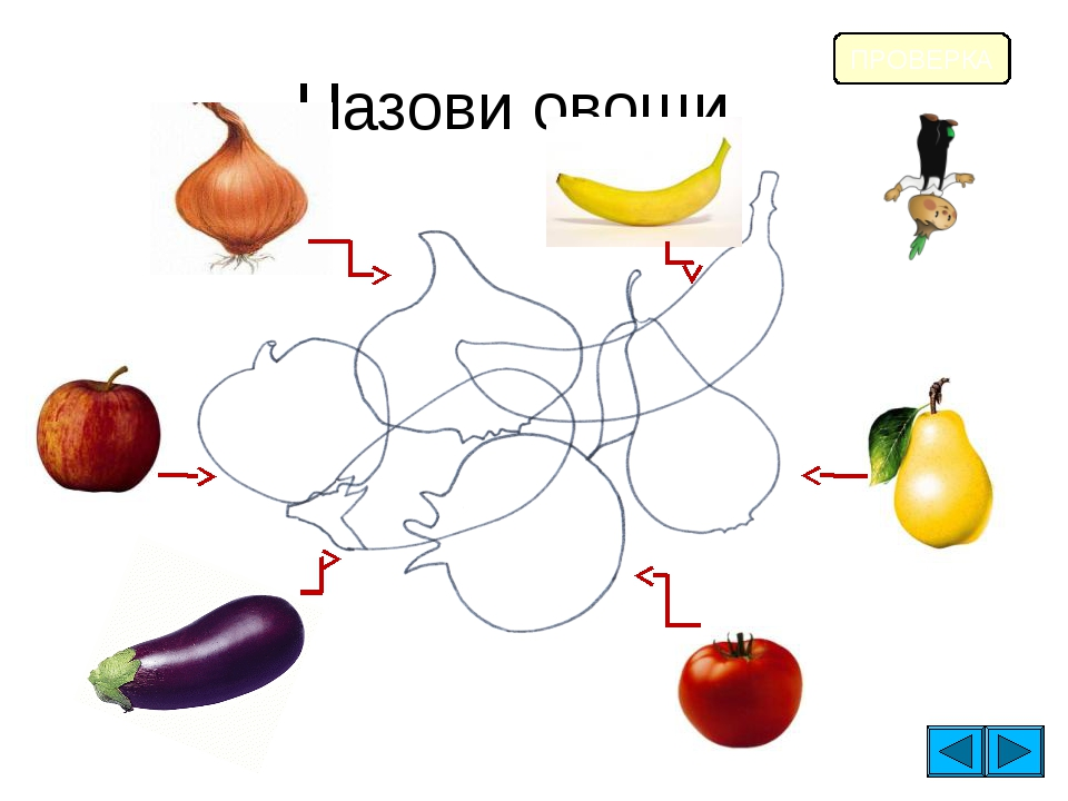 Назови овощи и фрукты. ПРОВЕРКА