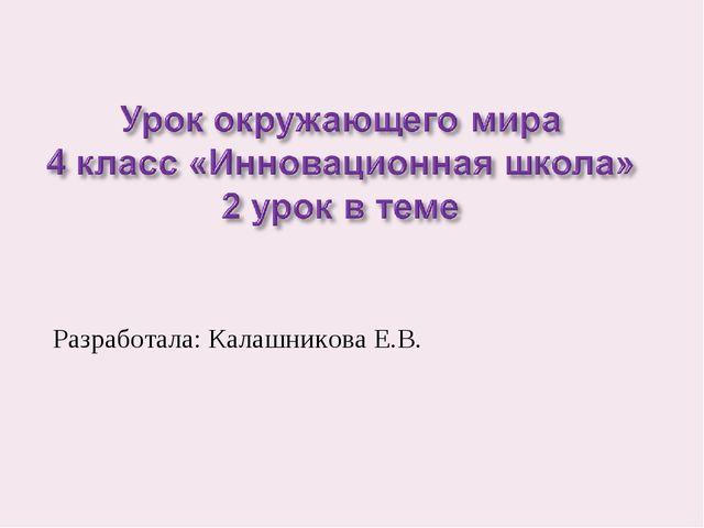 Разработала: Калашникова Е.В.