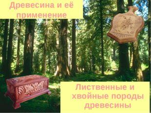Древесина и её применение Лиственные и хвойные породы древесины