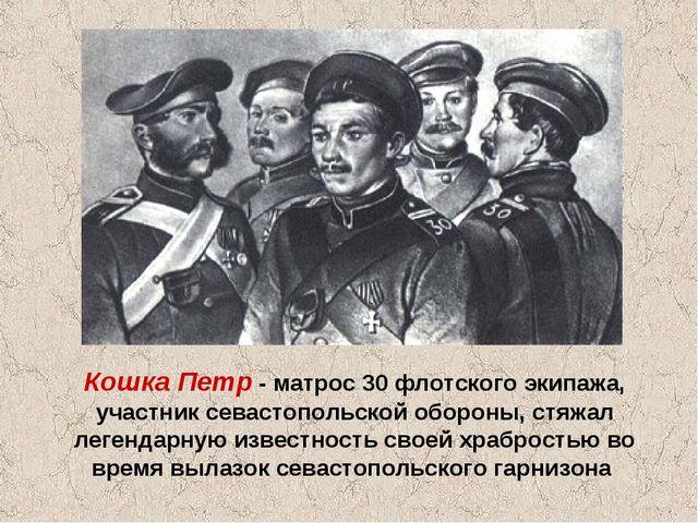 Кошка Петр - матрос 30 флотского экипажа, участник севастопольской обороны, с...