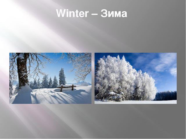Winter – Зима