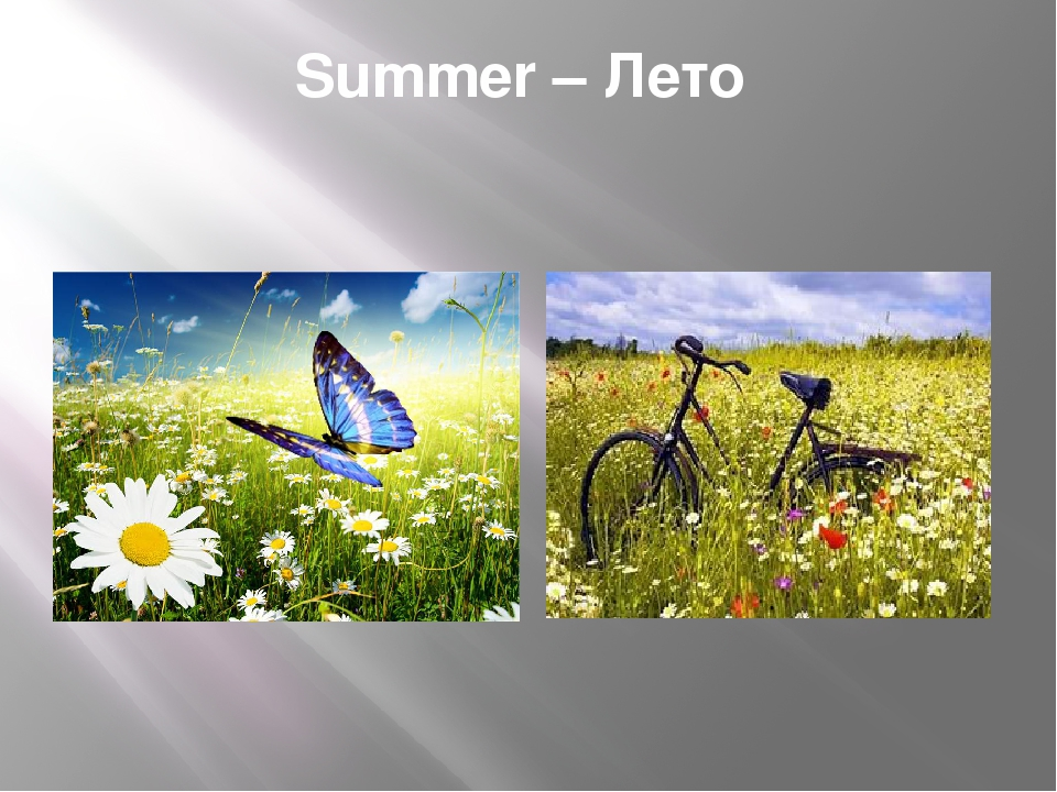 Summer – Лето