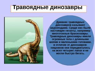 Травоядные динозавры Древних травоядных динозавров называют зауроподами. Сре