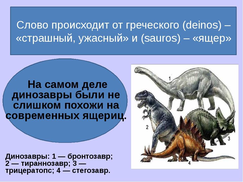 Слово происходит от греческого (deinos) – «страшный, ужасный» и (sauros) – «...