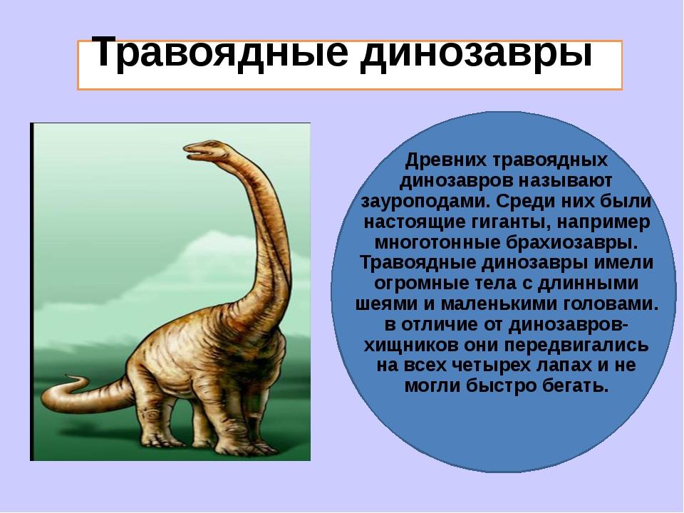 Травоядные динозавры Древних травоядных динозавров называют зауроподами. Сре...