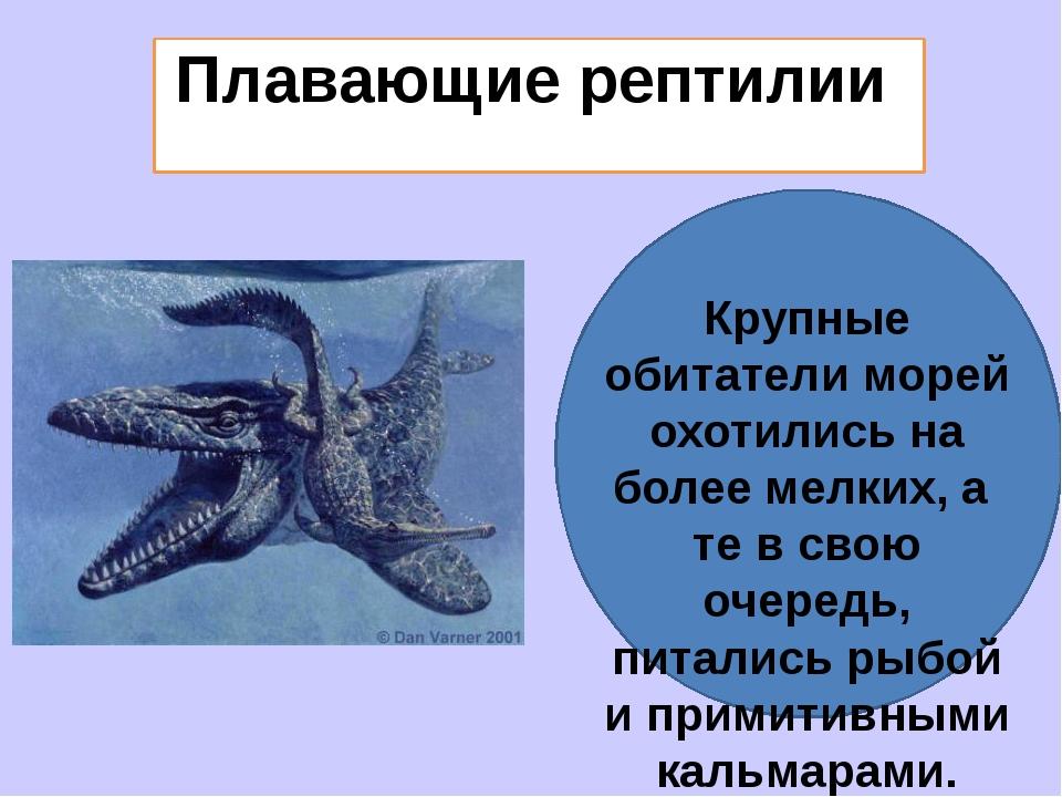 Плавающие рептилии Крупные обитатели морей охотились на более мелких, а те в...