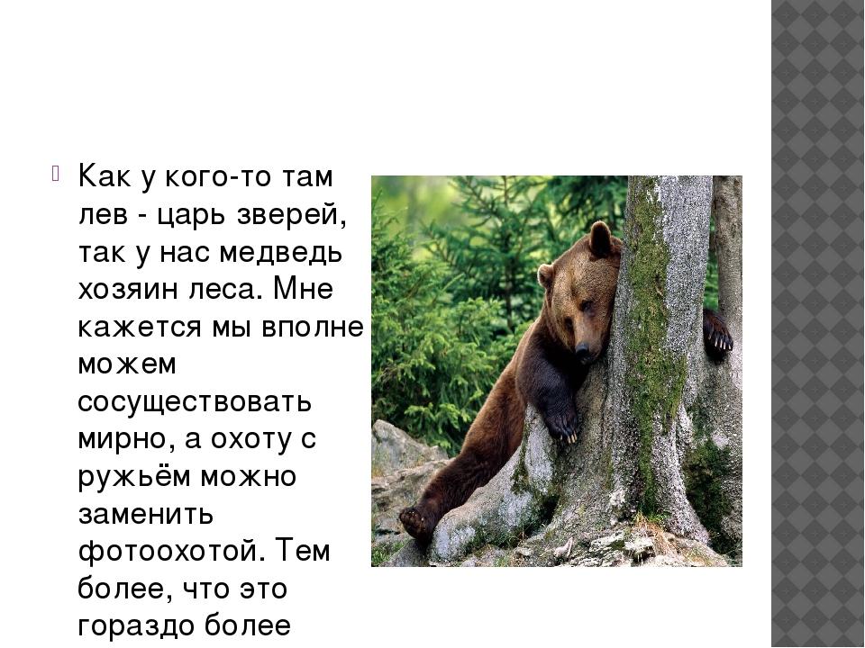 Как у кого-то там лев - царь зверей, так у нас медведь хозяин леса. Мне каже...