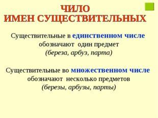 Существительные в единственном числе обозначают один предмет (береза, арбуз,