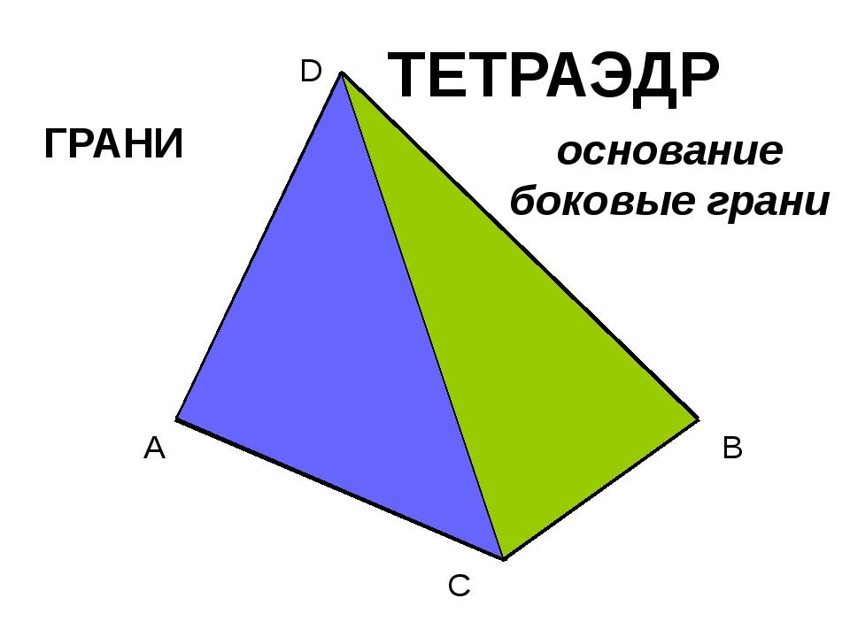 A B C D ТЕТРАЭДР ГРАНИ основание боковые грани