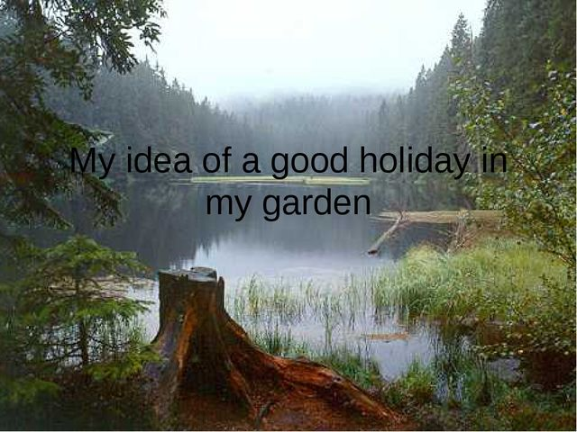My idea of a good holiday in my garden