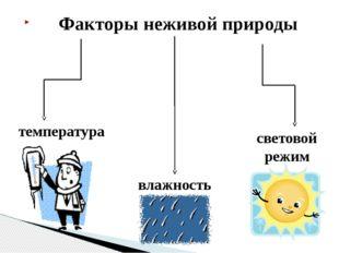 Факторы неживой природы температура влажность световой режим
