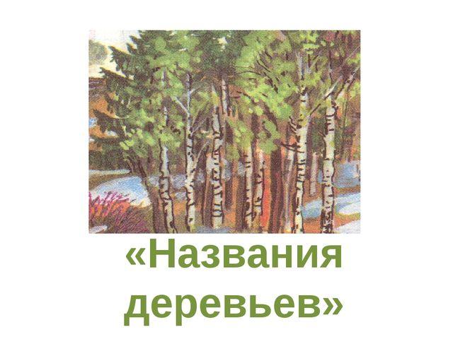 Тема: «Названия деревьев»