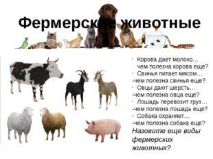 Фермерские животные Корова дает молоко… чем полезна корова еще? Свинья питает