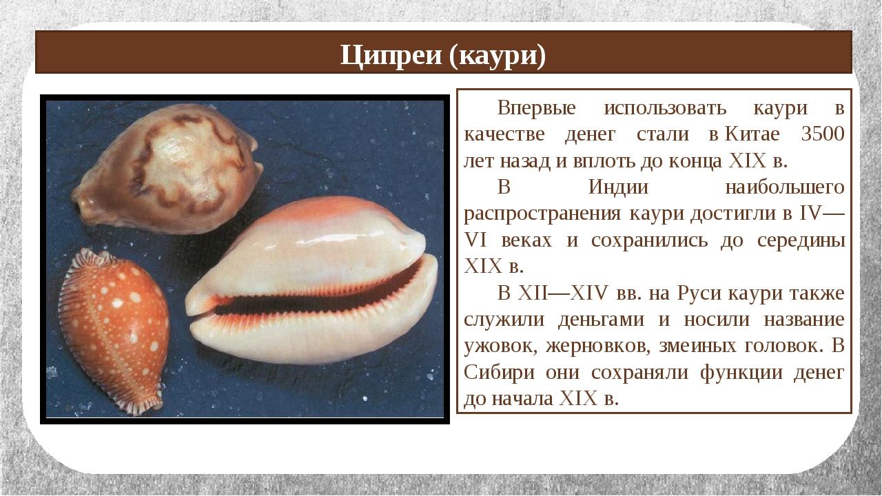 Ципреи (каури) Впервые использовать каури в качестве денег стали вКитае 350...