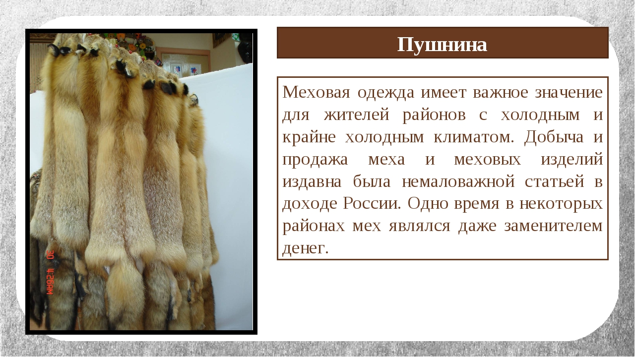 Меховая одежда имеет важное значение для жителей районов с холодным и крайне...