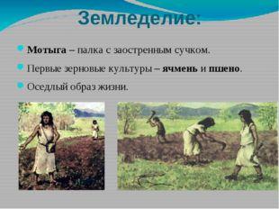 Земледелие: Мотыга – палка с заостренным сучком. Первые зерновые культуры – я