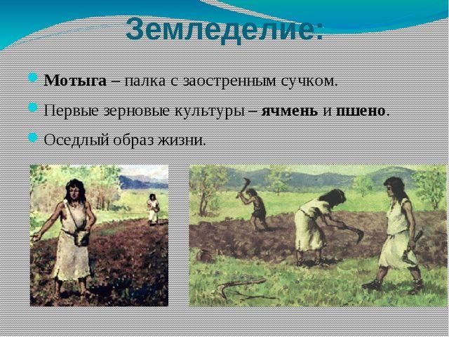 Земледелие: Мотыга – палка с заостренным сучком. Первые зерновые культуры – я...