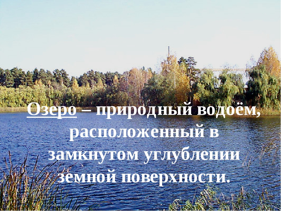 Озеро – природный водоём, расположенный в замкнутом углублении земной поверхн...