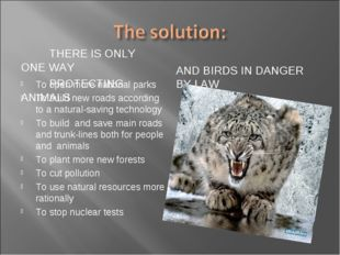 THERE IS ONLY ONE WAY PROTECTING ANIMALS AND BIRDS IN DANGER BY LAW To open