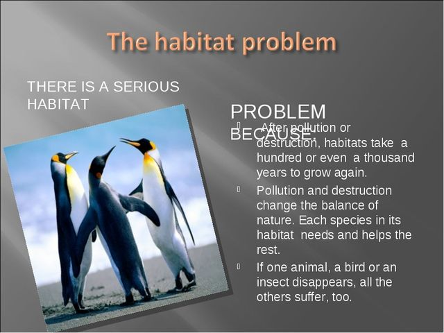 THERE IS A SERIOUS HABITAT PROBLEM BECAUSE: After pollution or destruction, h...
