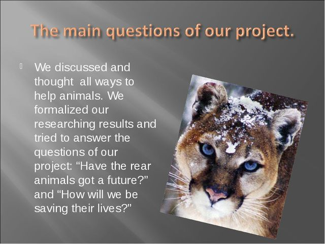 We discussed and thought all ways to help animals. We formalized our research...