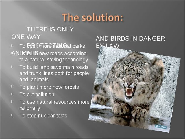 THERE IS ONLY ONE WAY PROTECTING ANIMALS AND BIRDS IN DANGER BY LAW To open...