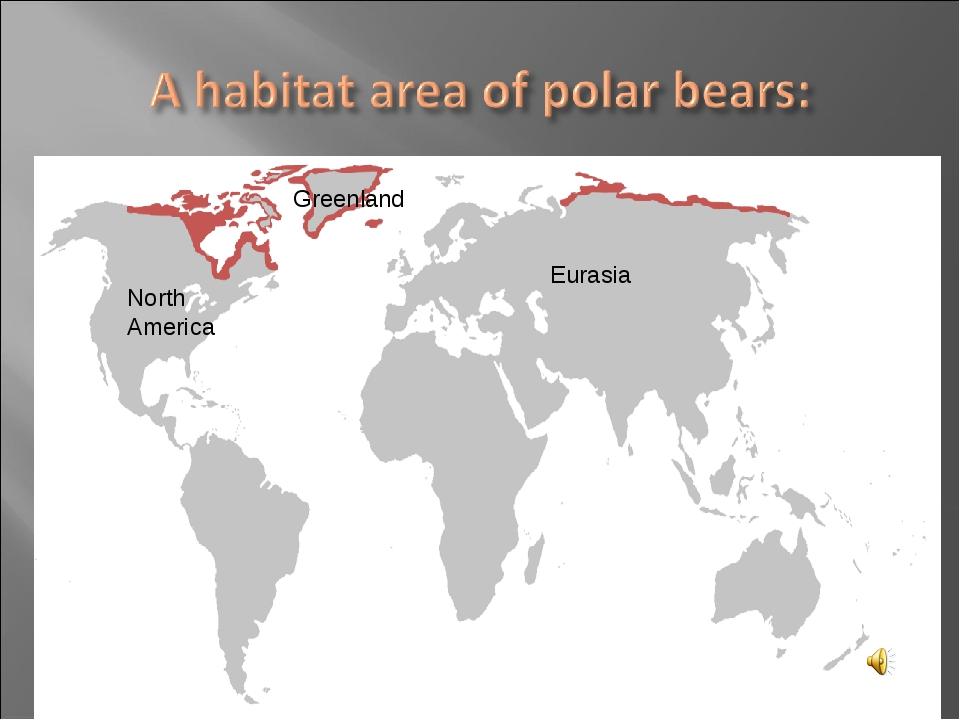 North America Eurasia Greenland