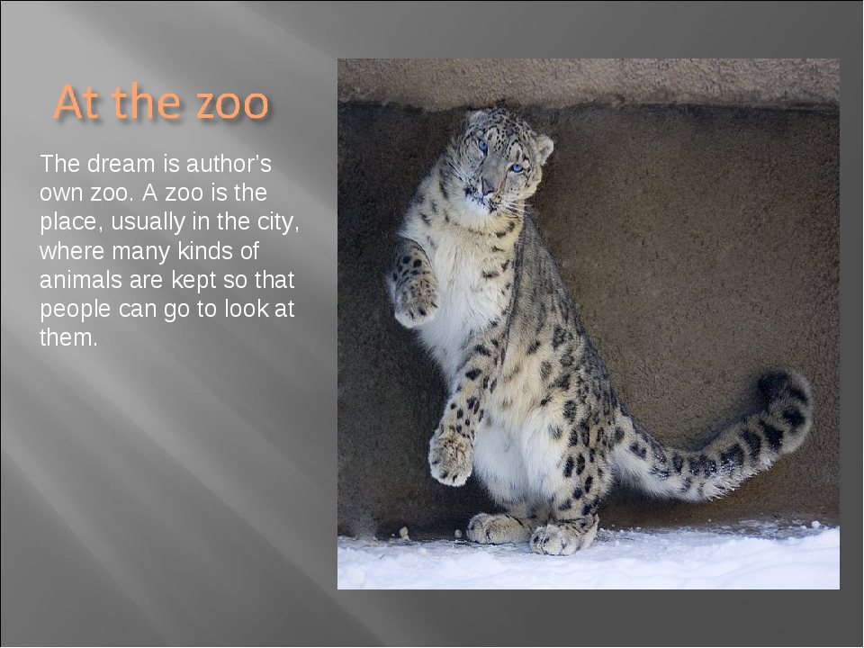 The dream is author's own zoo. A zoo is the place, usually in the city, where...