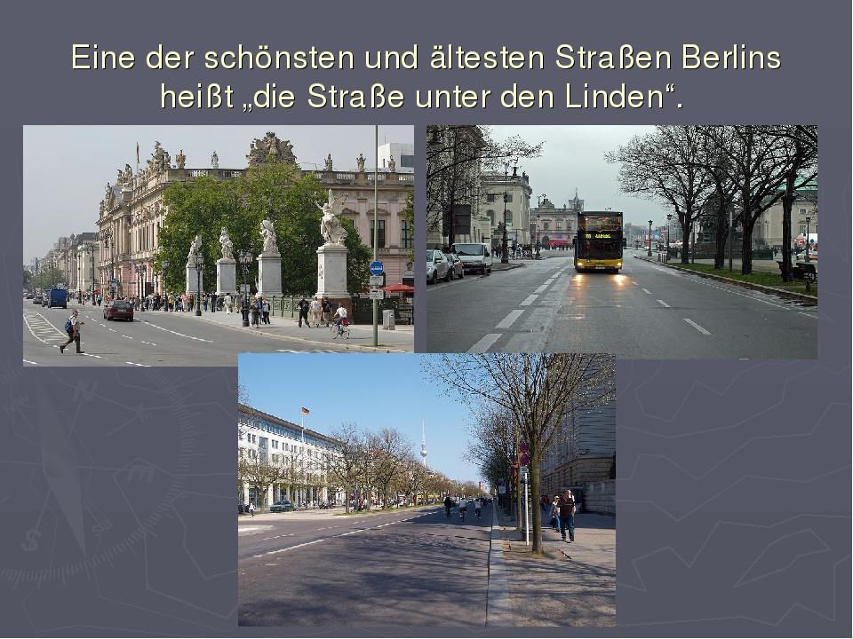 """Eine der schönsten und ältesten Straßen Berlins heißt """"die Straße unter den..."""