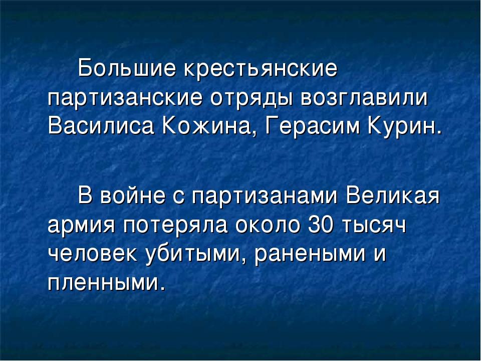 Большие крестьянские партизанские отряды возглавили Василиса Кожина, Гер...