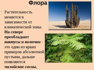 Флора Растительность меняется в зависимости от климатической зоны. На севере