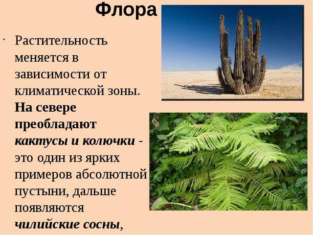 Флора Растительность меняется в зависимости от климатической зоны. На севере...