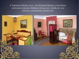 В Тарханах Михаил жил как богатый барчук, у него было несколько комнат, бабуш