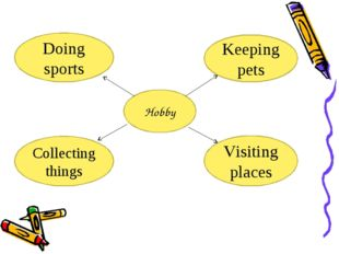 Hobby Doing sports Keeping pets Collecting things Visiting places